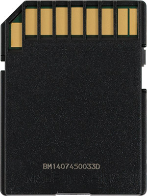 SanDisk Extreme Plus 80MB/s SD Card Back