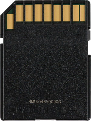 SanDisk Extreme Pro 95MB/s SD Card Back